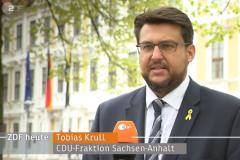 2021-05-07-Krull-ZDF-heute