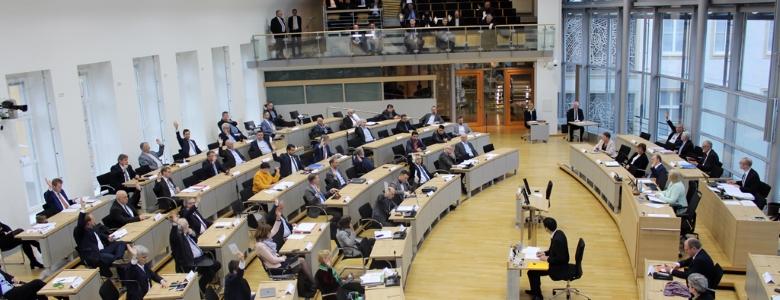 Blick in den Plenarsaal am 20. Februar 2020. (Photo Antonia Fritsche)